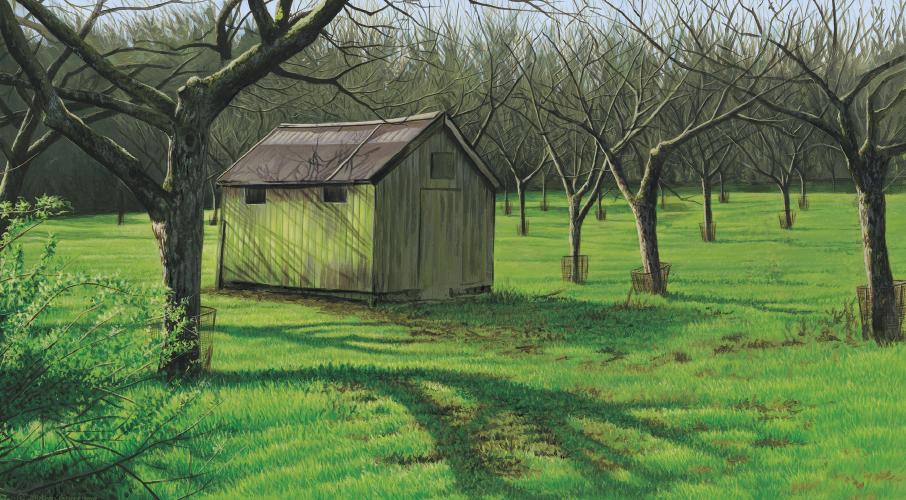 Whittingham Apple Orchard